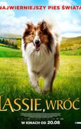 lassie wroc